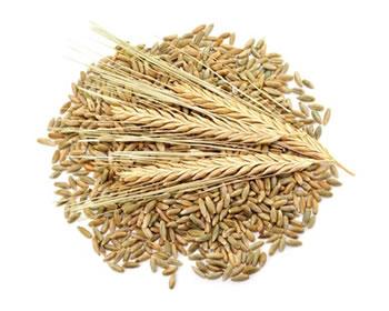 Getreideart